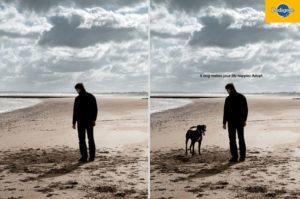 pubblicità creativa pedigree